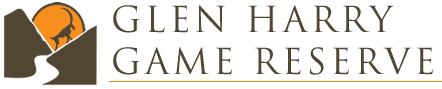glen harry logo